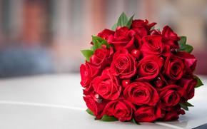 Картинка букет, красные, роз