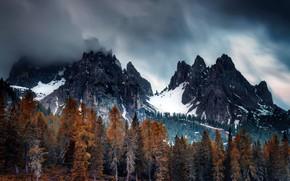 Картинка осень, горы, туман