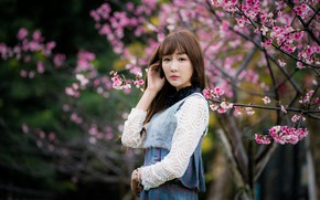 Картинка девушка, ветки, азиатка, цветение, боке
