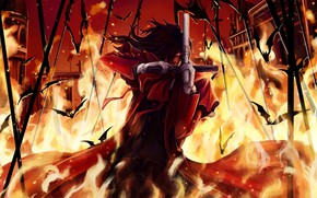 Картинка пожар, огонь, пистолеты, вампир, Hellsing, колья