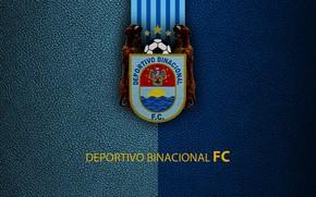 Картинка wallpaper, sport, logo, football, Binacional