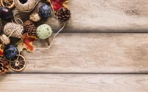 Картинка осень, листья, фон, дерево, colorful, фрукты, орехи, сливы, шишки, wood, background, autumn, leaves, fruits, осенние, …
