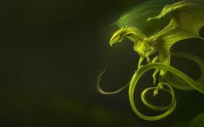 Картинка Природа, Дракон, Растение, Крылья, Fantasy, Nature, Dragon, Art, Фантастика, Wings, Plant, Creatures, Существа, Vine Dragon, …