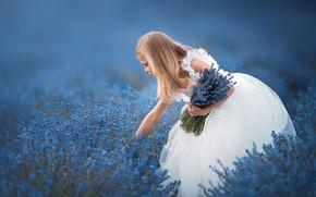 Обои платье, лаванда, букет, настроение, боке, цветы, девочка