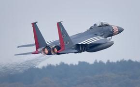 Картинка ВВС США, истребитель-бомбардировщик, американский двухместный, ударный орёл, McDonnell Douglas F-15E Strike Eagle