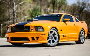 Картинка Mustang, Ford, 2008, Saleen, S302, Extreme