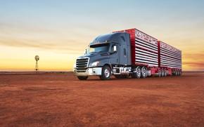 Картинка sunset, australia, Freightliner Cascadia