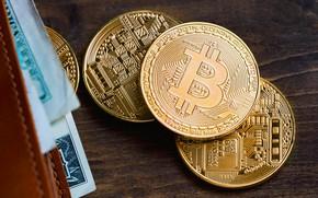 Картинка стол, gold, купюры, table, бумажник, bitcoin, биткоин, btc