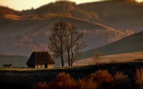 Картинка осень, деревья, пейзаж, природа, холмы, дома, леса, Румыния, Александр Перов