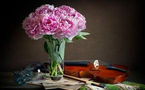 Картинка ноты, скрипка, бокал, натюрморт, смычок, пионы