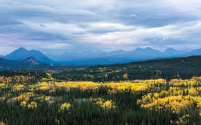 Картинка осень, лес, облака, горы, туман, вид