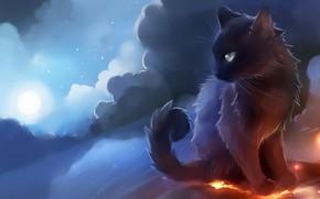 Картинка кот, облака, арт, сидит, рисовка