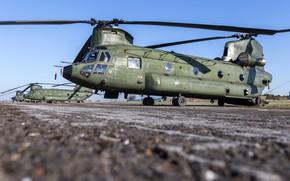 Картинка CH-47 Chinook, Chinook, Royal Netherlands Air Force, ВВС Нидерландов, Boeing CH-47D Chinook