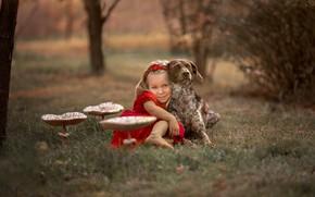 Картинка гриб, собака, девочка