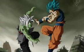 Картинка бой, парни, сражение, Dragon Ball