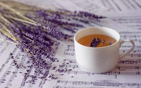 Картинка ноты, чай, лаванды
