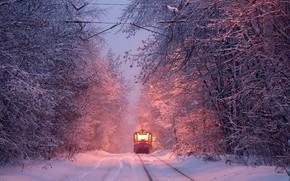 Картинка зима, трамвай, winter, tram, Алексей Харитонов