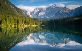 Картинка лес, горы, озеро, отражение, Италия, Italy, Юлийские Альпы, Tarvisio, Тарвизио, Julian Alps, Fusine Lake, Озеро …