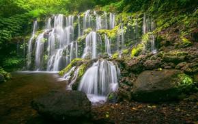 Картинка лес, река, камни, водопад, Бали, Индонезия, каскад, Bali, Indonesia, Banyu Wana Amertha Waterfall