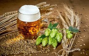 Картинка зерно, пиво, колосья, напиток, хмель