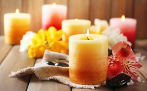 Картинка цветы, свечи, боке