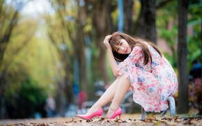 Картинка взгляд, девушка, милая, платье, ножки, азиатка, сидит, боке