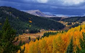 Картинка осень, лес, горы, осень в горах