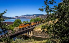 Картинка пейзаж, мост, поезд