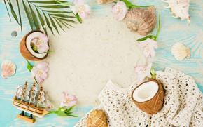Картинка песок, лето, кокос, ракушки, summer, beach, flowers, sand, coconut, vacation, seashells