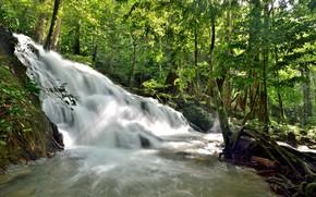 Картинка лес, пейзаж, река, скалы, водопад, summer, forest, тропический, river, landscape, beautiful, waterfall, tropical