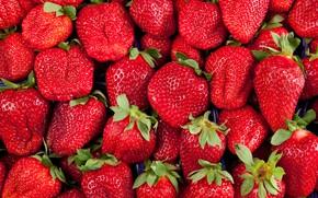 Картинка фон, текстура, клубника, ягода, red, fresh, background, strawberry, berries