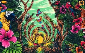 Картинка Цвет, Минимализм, Обезьяна, Тигр, Птица, Лес, Стиль, Фон, Попугай, Джунгли, Арт, Art, Style, Background, Minimalism, …