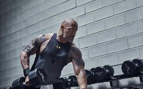 Картинка взгляд, поза, тату, татуировка, актёр, muscle, мышцы, рестлер, Дуэйн Джонсон, tattoo, Dwayne Johnson, атлет, бицепс, …