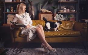 Картинка кошка, девушка, поза, диван, платье, книга, ножки, Сергей Гокк