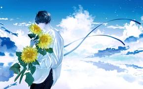 Картинка облака, подсолнухи, цветы, парень, by 世