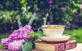 Картинка лето, природа, стол, ветка, чашка, книга, сирень