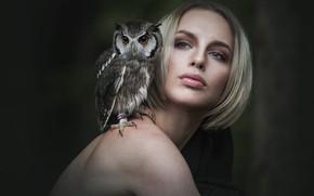 Картинка глаза, взгляд, девушка, лицо, темный фон, друг, сова, птица, стрижка, портрет, поворот, блондинка, дружба, плечи, …