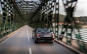 Картинка мост, скорость, седан, Škoda, Skoda, четырёхдверный, Superb, 2020, цвет тёмного нефильтрованного пива
