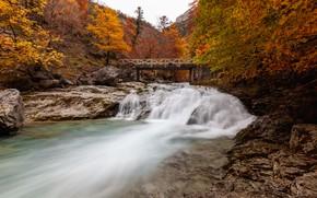 Картинка осень, деревья, мост, река, Испания, каскад, Spain, Ordesa y Monte Perdido National Park, Национальный парк …