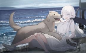 Картинка девушка, собака, друзья