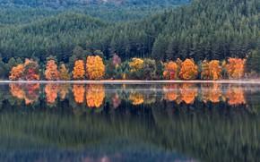 Обои осень, лес, вода, деревья, горы, озеро, отражение, берег, Шотландия, Loch Morlich