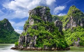 Картинка море, зелень, тропики, гора