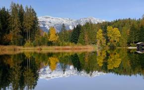 Картинка осень, лес, снег, деревья, горы, отражение, берег, вершины, вид, желтые, ели, сосны, домик, водоем, водная …