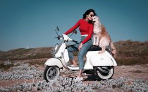 Картинка девушка, настроение, побережье, собака, джинсы, друзья, мотороллер, скутер