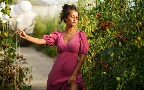 Картинка солнце, модель, портрет, макияж, сад, фигура, платье, прическа, шатенка, стоит, позирует, боке, Eikonas