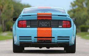 Картинка Mustang, Ford, Saleen, вид сзади, Coupe, 2007, Extreme, S281