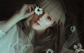 Обои взгляд, девушка, цветы, лицо, настроение, волосы, рука, чёлка, Joana Kretzer Brandenburg, by Leda Lacintra