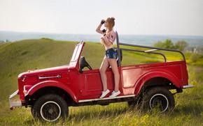 Картинка авто, девушка, поза, шорты, фигура, луг, ножки, Лозгачев Алексей