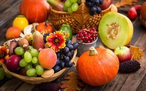 Картинка осень, листья, яблоки, виноград, тыква, персики, autumn, grapes, pumpkin