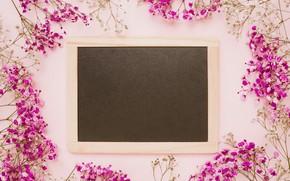 Картинка цветы, фон, розовый, рамка, pink, flowers, frame, floral